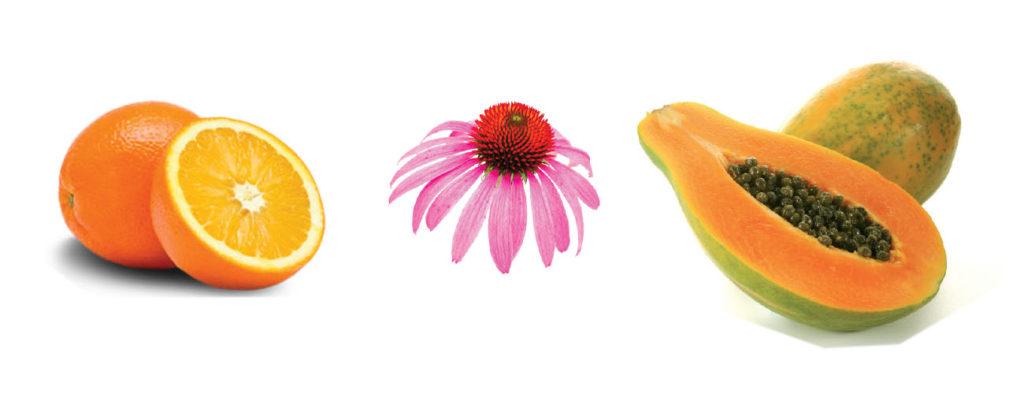 Immunofend integratore alimentare per il tuo inverno